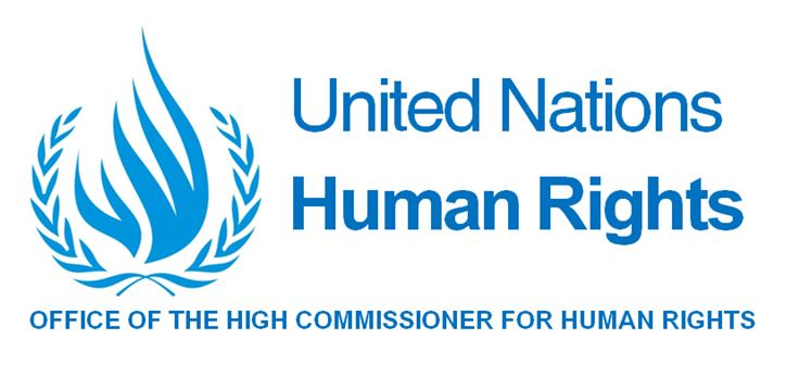 Logo Comité de Naciones Unidas